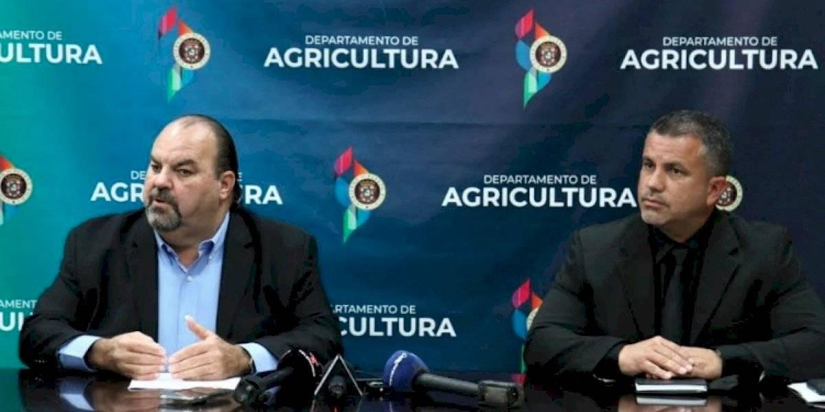 Agricultura moviliza agricultores para que se conviertan en licitadores del Gobierno