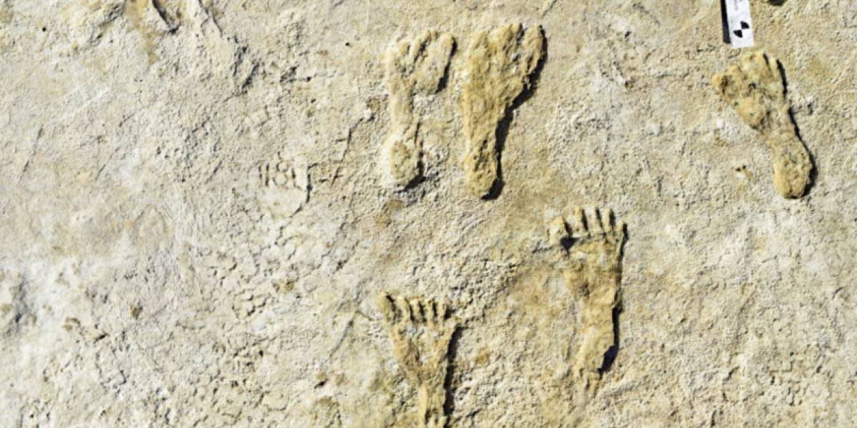 Hallan huellas humanas de hace 23,000 años en Nuevo México