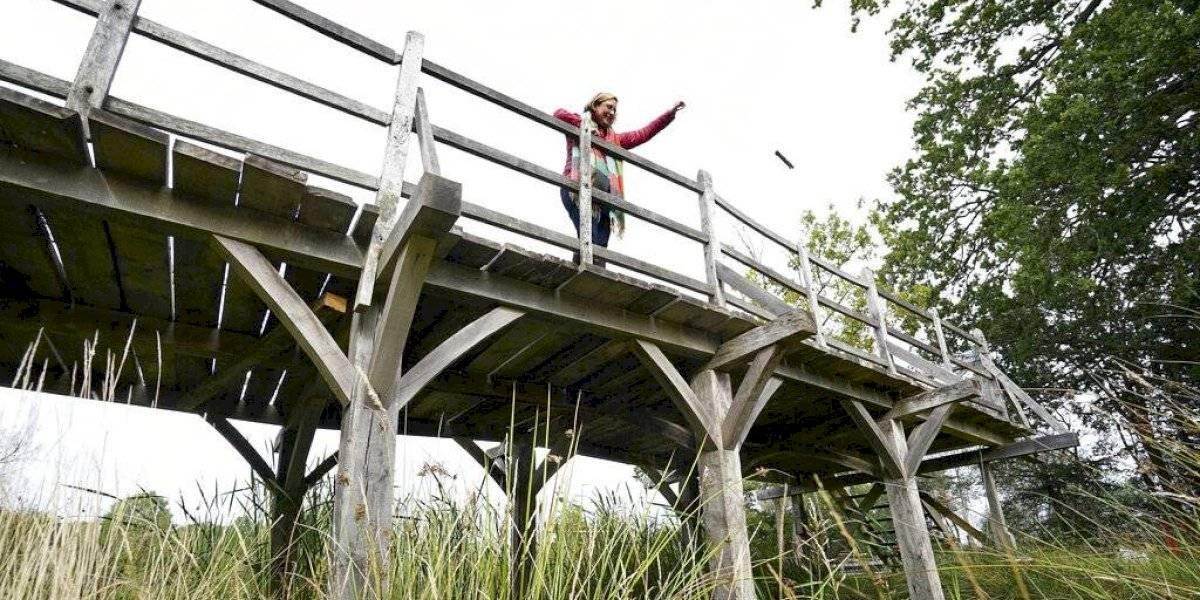 Puente de Winnie Pooh será subastado