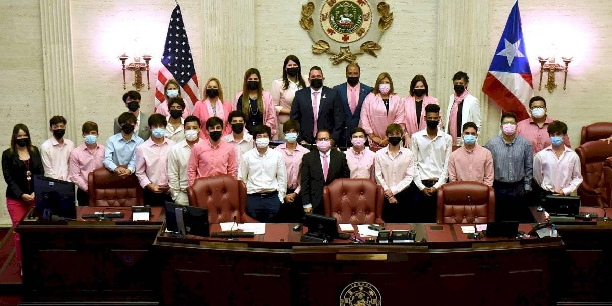 Sobrevivientes de cáncer de seno llegan al Senado