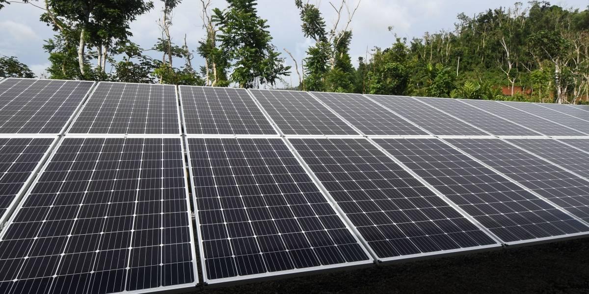 Marcada emigración de consumidores a la energía renovable