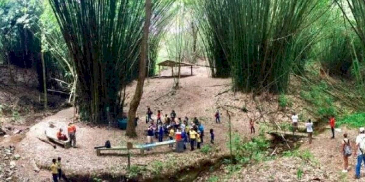 Bosque en Corozal recibe la Primera Gran Feria Artesanal del Distrito 28