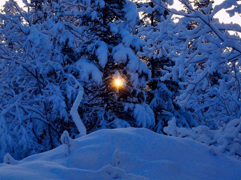 Fotos de hermosos paisajes nevados en el mundo nueva mujer - Paisaje nevado navidad ...